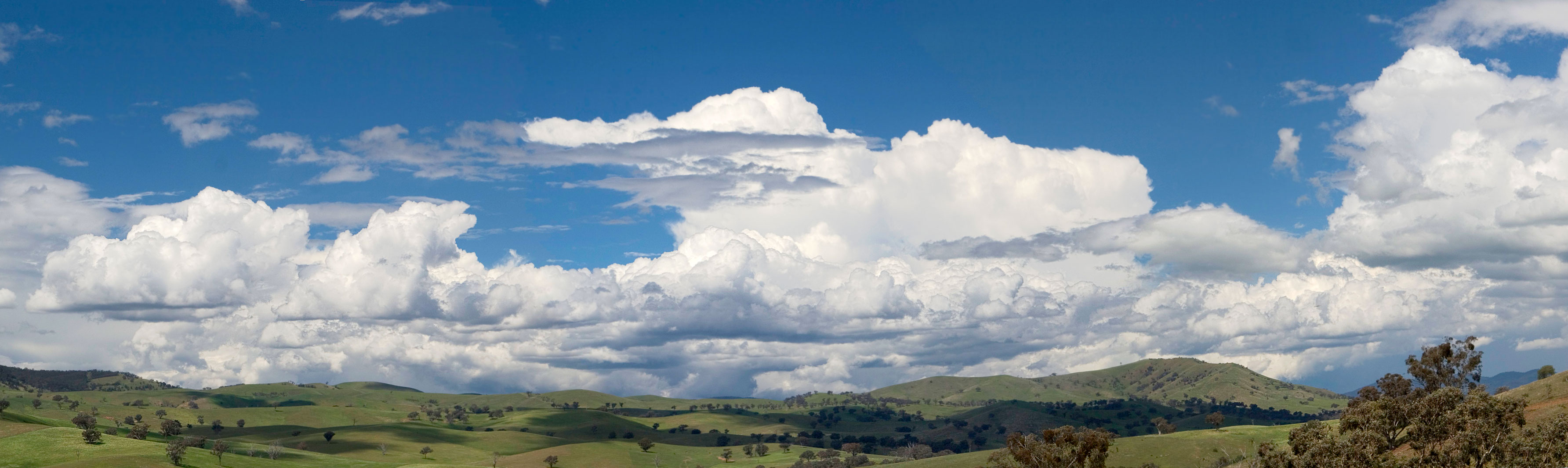 Cumulus_clouds_panorama